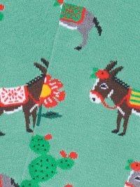 donkeys-turquoise-color_2